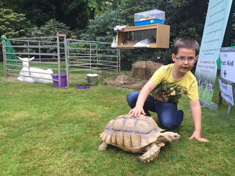 Hayden with tortoise